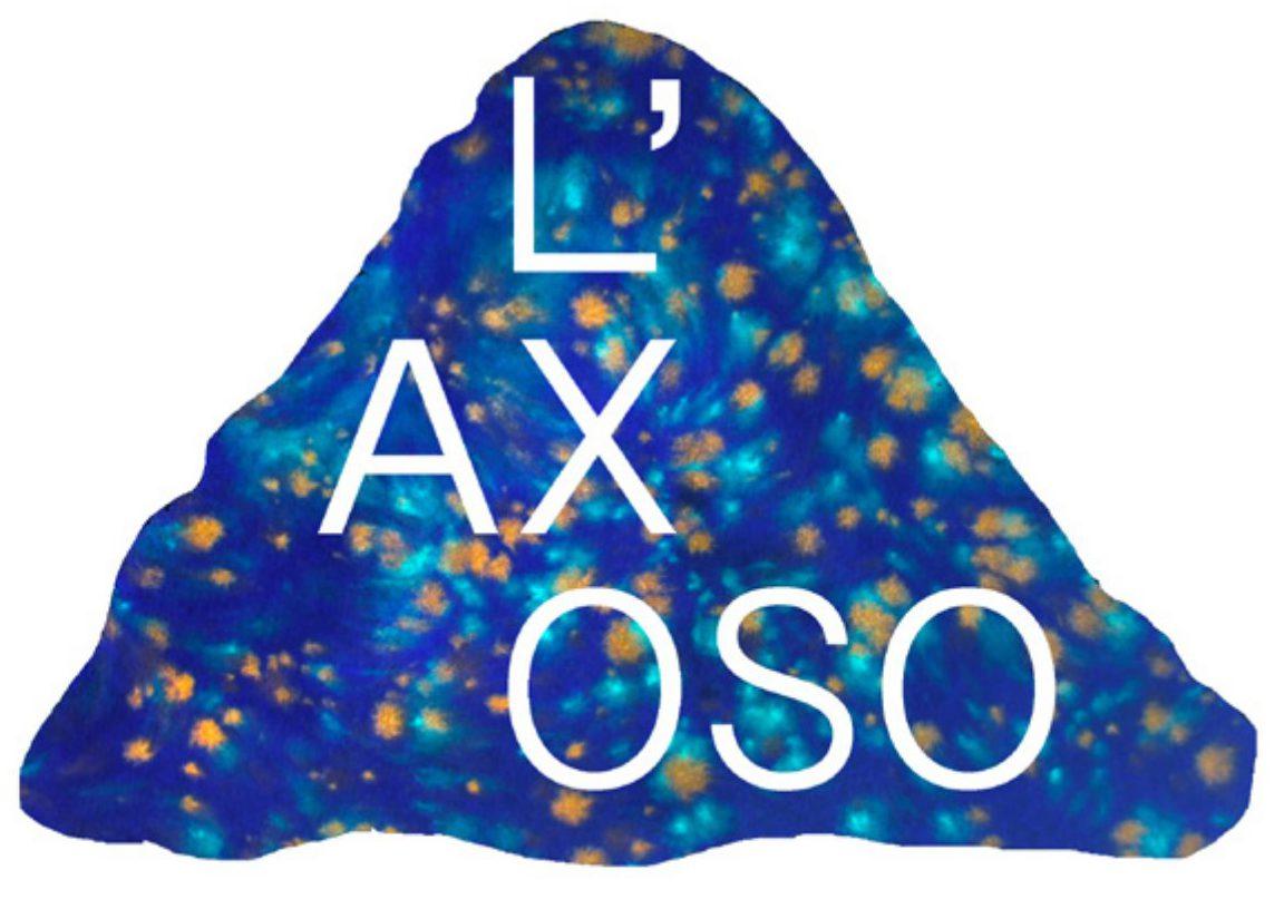 L'AXOSO
